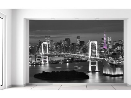 Fototapeta Noční pohled na Tokio  Extra gramáž a tloušťka (180-212g/m2 a 100um)