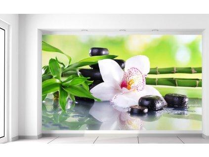 Fototapeta Bílá orchidej a kameny  Extra gramáž a tloušťka (180-212g/m2 a 100um)