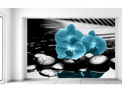 Fototapeta Tyrkysová orchidej a kameny  Extra gramáž a tloušťka (180-212g/m2 a 100um)