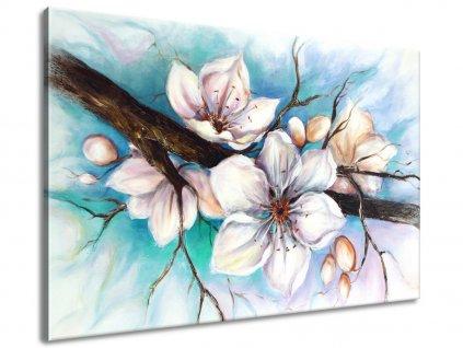 Ručně malovaný obraz Pupeny višně  100% ručně malovaný