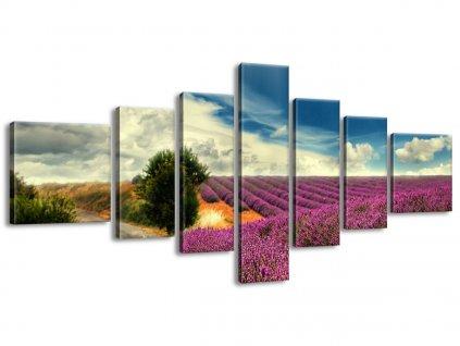 Obraz na plátně Levandulová země 160x70cm  Tištěný v HD