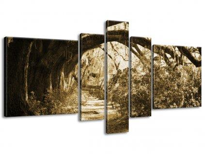 Obraz na plátně Cestička při dubech 160x80cm  + Dárek