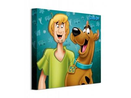 Obraz na plátně Scooby Doo Shaggy and Scooby 40x40cm  + Dárek
