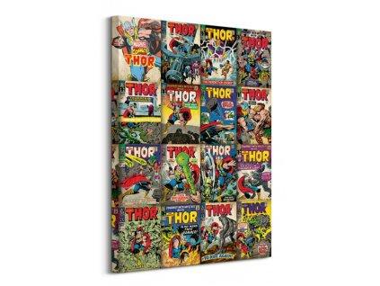 Obraz na plátně Marvel Thor Covers 60x80cm  + Dárek