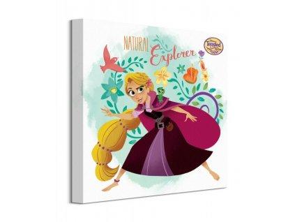 Obraz na plátně Disney Na vlásku Seriál Rapunzel 60x80cm  Tištěný v HD
