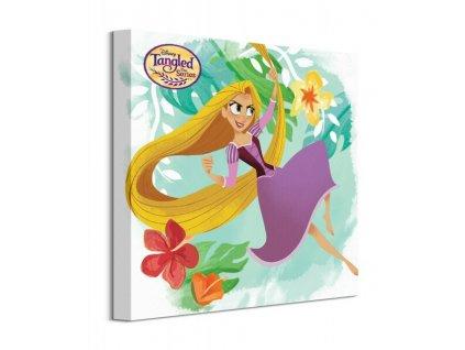 Obraz na plátně Disney Na vlásku Seriál - Rapunzel 40x40cm  Tištěný v HD