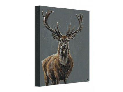 Obraz na plátně Majestátní jelen Brown Louise 30x40cm  Tištěný v HD