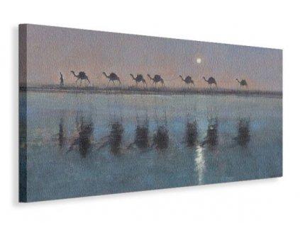 Obraz na plátně Velbloudi u řeky Sanders Jonathan 100x50cm  Tištěný v HD