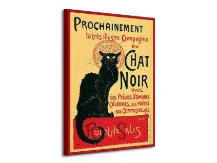 Obraz na plátně Černá kočka Chat Noir 60x80cm  Tištěný v HD