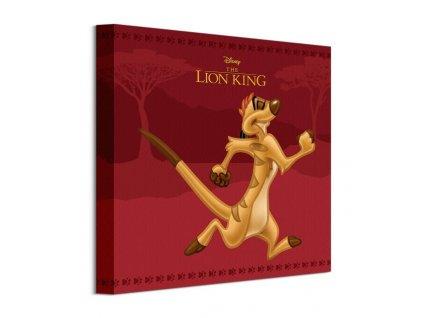 Obraz na plátně Disney Lví král Timon 30x30cm  Tištěný v HD
