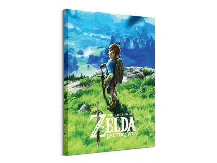 Obraz na plátně The Legend Of Zelda Breath Of The Wild 60x80cm  Tištěný v HD
