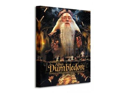 Obraz na plátně Harry Potter (Brumbál) 40x50cm  Tištěný v HD