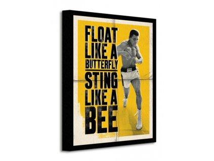 Obraz na plátně Muhammad Ali (Float Like A Butterfly - Corbis) 30x40cm  + Dárek