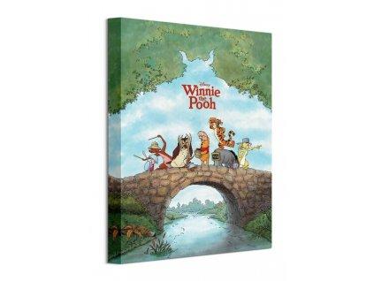 Obraz na plátně Disney Medvídek Pú 30x40cm  Tištěný v HD