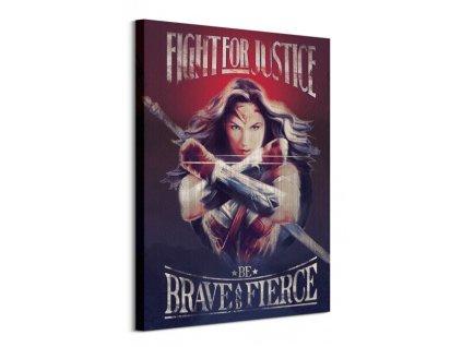 Obraz na plátně DC Comics Wonder Woman Fight For Justice 60x80cm  + Dárek