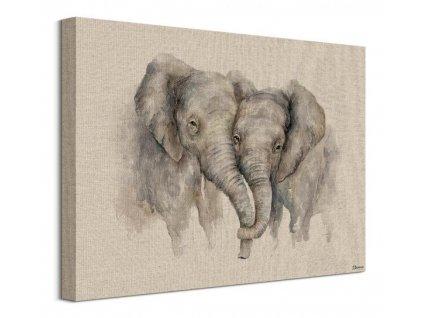 Obraz na plátně Zamilovaní sloni Bannon Jane 40x30cm  Tištěný v HD