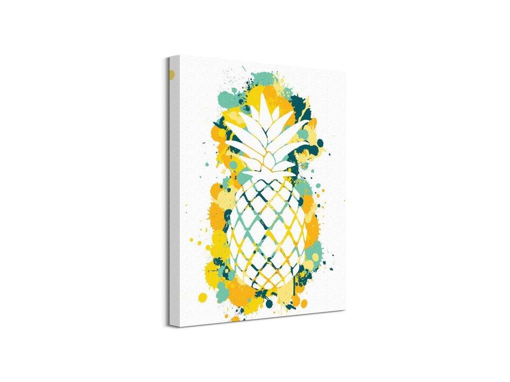 16720 vaszonkep ananasz sziluett art studio 40x50cm