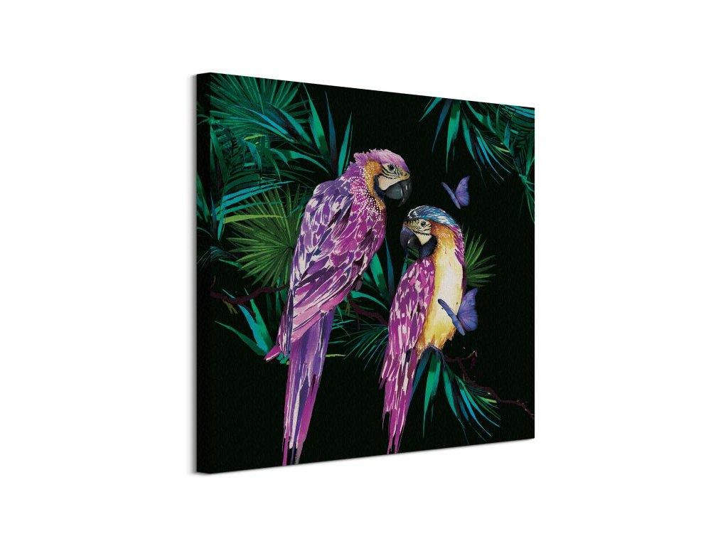 16909 vaszonkep papagajok thornton summer 60x60cm