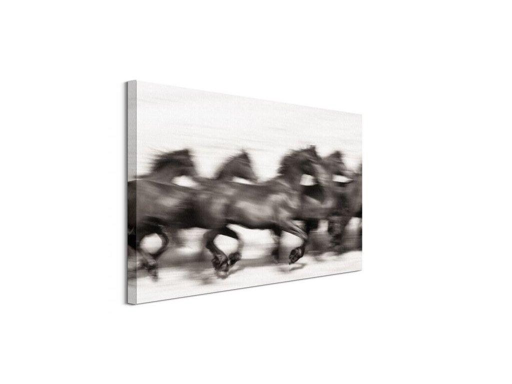 18061 vaszonkep gyors lovak jones carys 80x60cm