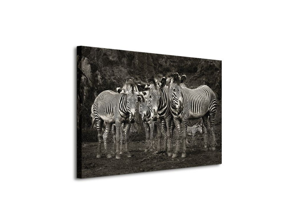 18091 vaszonkep negy zebra 80x60cm