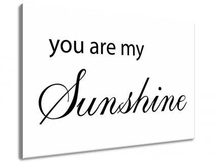 Vászonkép You are my sunshine  + Ajándék