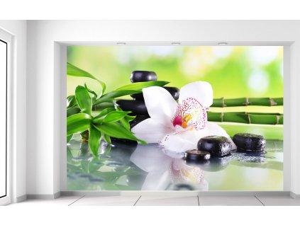 Fotótapéta Fehér orchidea és kövek  Extra súly és vastagság (180-212g/m2 és 100um)