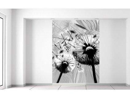 Fotótapéta Gyönyörű feketefehér pitypangok  + Ajándék