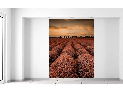 Fotótapéta Narancssárga levendulás táj 150x200cm  + Ajándék