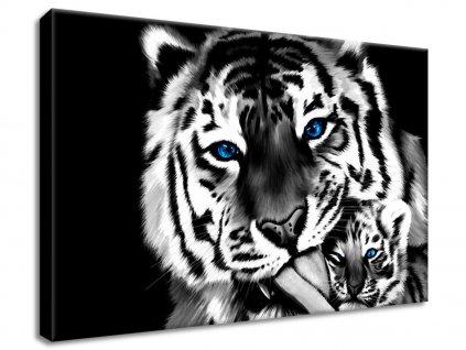 Vászonkép Festett tigrisek  HD nyomtatás