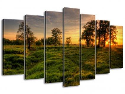 Vászonkép Fák közötti naplemente 140x80cm  + Ajándék