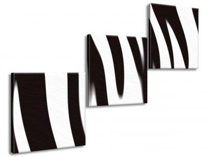 Vászonkép Fekete-fehér falikép 120x80cm  + Ajándék