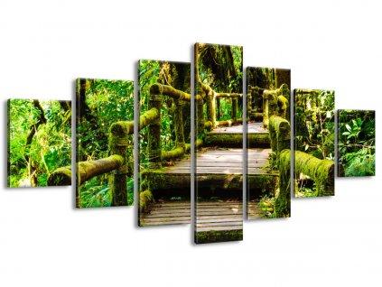 Vászonkép Falépcső az őserdőben 140x80cm  + Ajándék