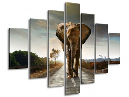 Vászonkép Magányos erős elefánt 140x80cm  + Ajándék