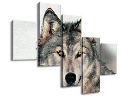 Vászonkép Szürke farkas 100x75cm  HD nyomtatás