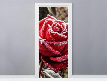 Öntapadó ajtómatrica Fagyott rózsa 95x205cm  + Ajándék