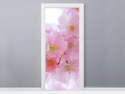 Öntapadó ajtómatrica Rózsaszín meggyvirágok 95x205cm  + Ajándék