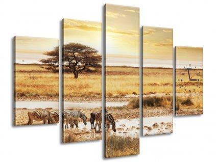 Órás falikép Zebrák a Szafarin 150x105cm  + Ajándék