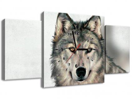 Órás falikép Gyönyörű farkas 80x40cm  + Ajándék