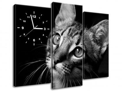Órás falikép Macska tekintet - Visualpanic 90x70cm  + Ajándék