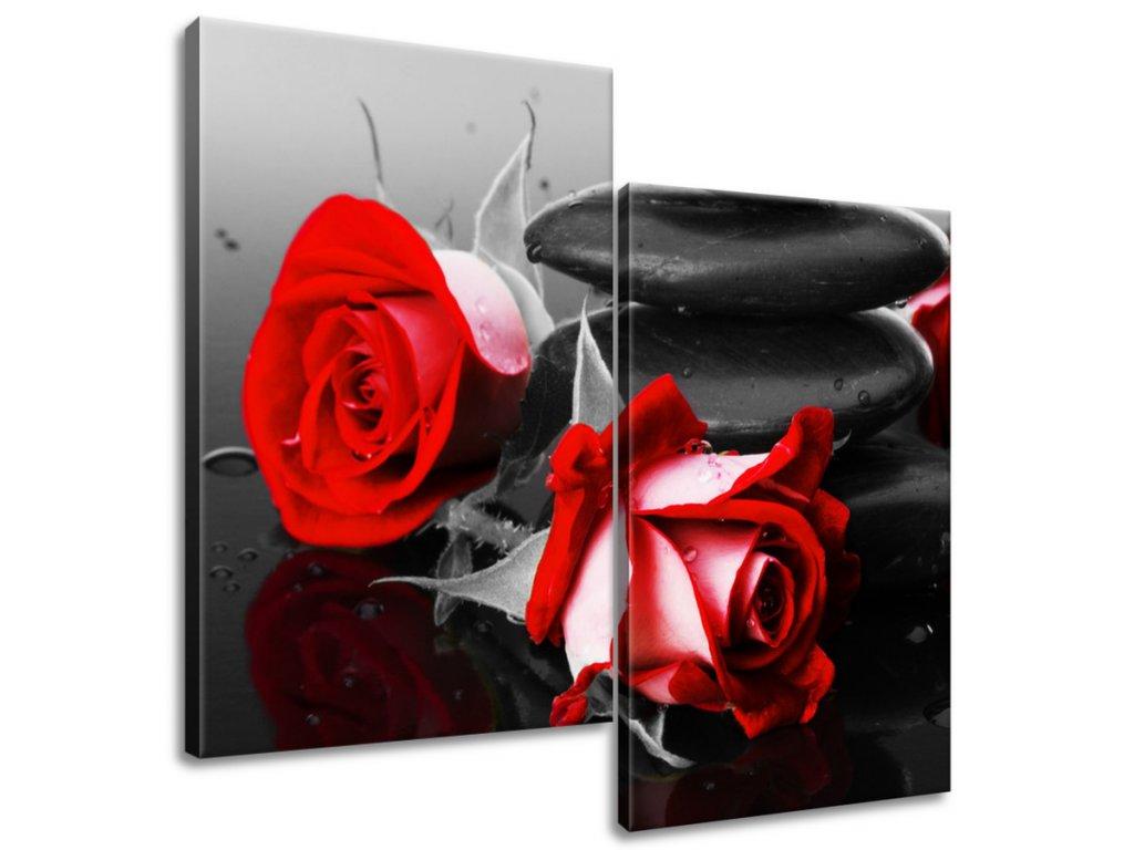 Obraz na plátne Roses and spa  Tlačený v HD