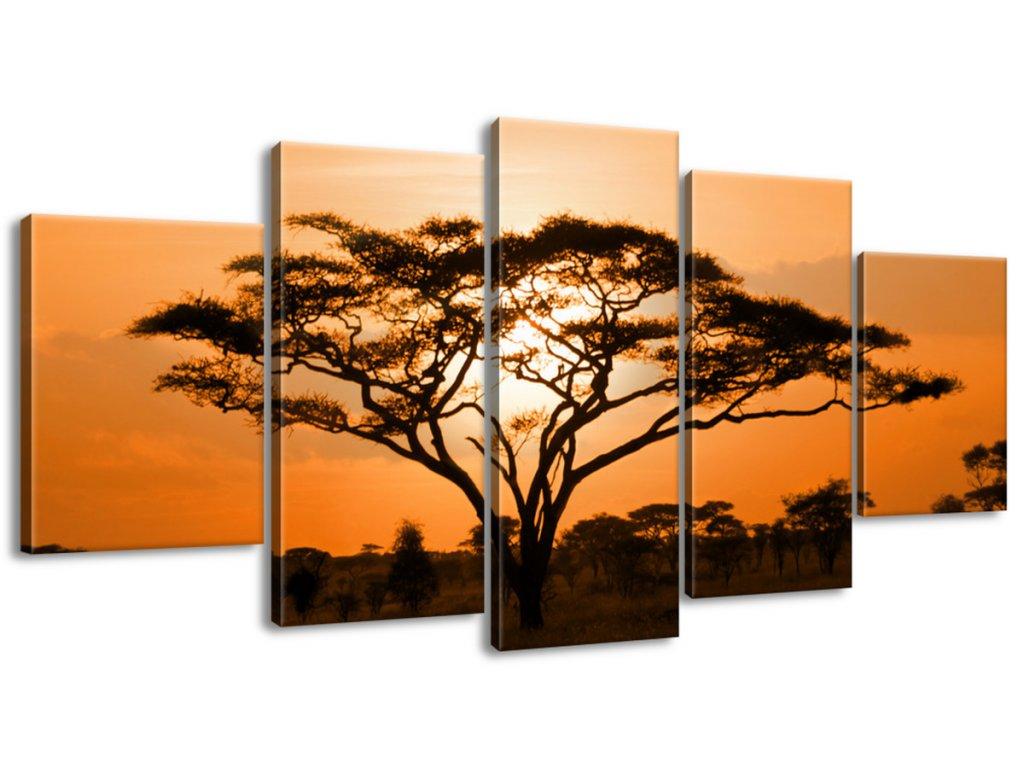 Obraz na plátne Nádherná africká krajina  Tlačený v HD