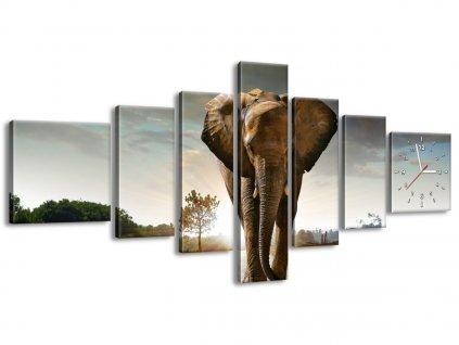 Obraz s hodinami Osamelý silný slon 210x100cm  + Darček