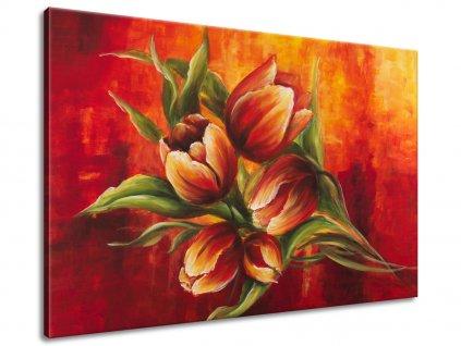 Ručne maľovaný obraz Abstraktné tulipány 120x80cm  + Darček