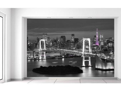 Fototapeta Nočný pohľad na Tokio  + Darček