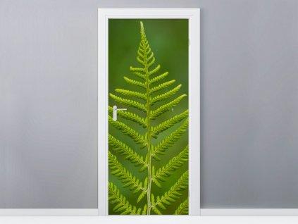 Samolepiaca fólia na dvere Zelená papraď 95x205cm  + Darček