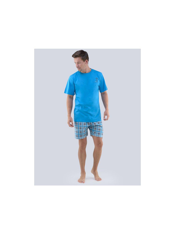 Pánske pyžamo GINA 79066