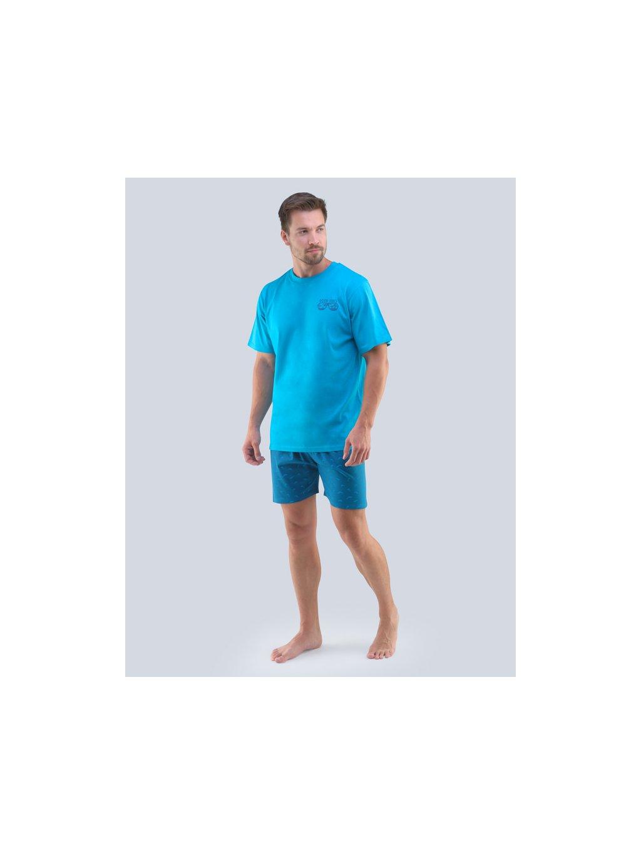 Pánske pyžamo GINA 79096