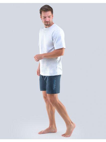 Pánske pyžamo GINA 79102