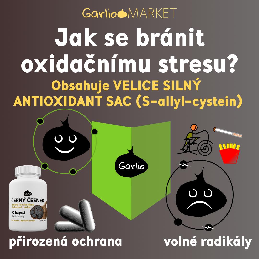 Černý česnek: silné antioxidační účinky (+studie)
