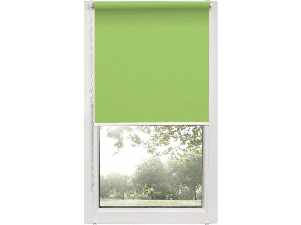 Roleta na okno Polyester 873 s vodícími silony